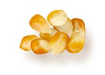 Зерносушилки «МИГ»